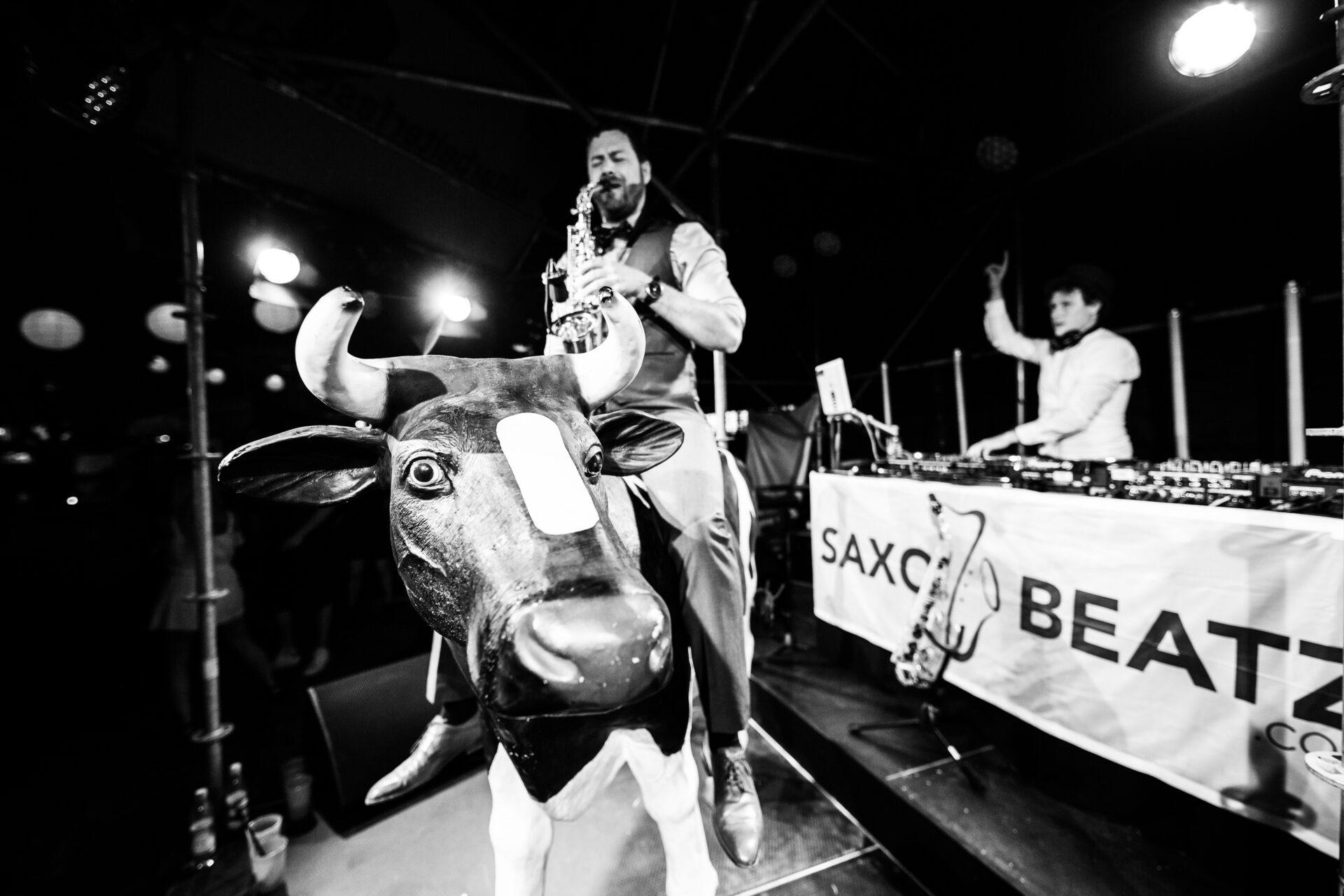 Saxophonist Adrian Planitz reitet eine Kuh - DJ Jörn Gropp im Hintergrund